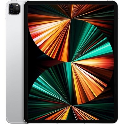Apple iPad Pro 11 (2021) 512Gb Wi-Fi + Cellular Silver - фото 41121