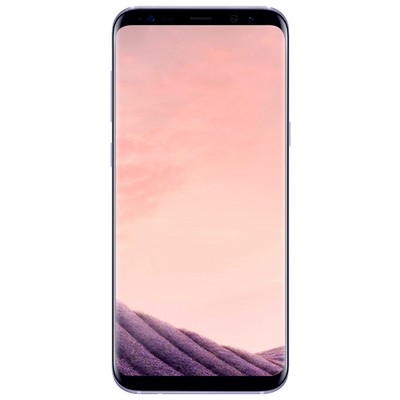 Samsung Galaxy S8 64GB SM-G950FD Мистический аметист - фото 10118