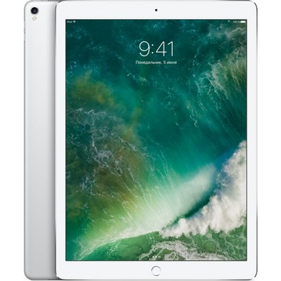 Apple iPad Pro 12.9 (2017) 256Gb Wi-Fi Silver  РСТ - фото 6277