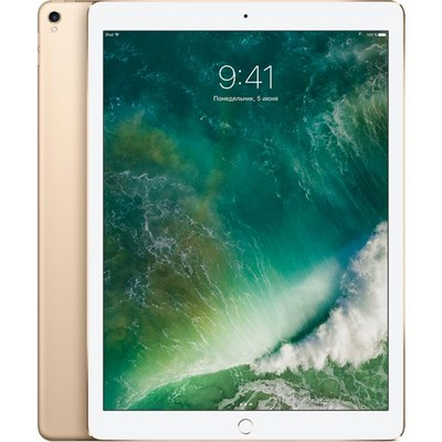 Apple iPad Pro 12.9 (2017) 512Gb Wi-Fi Gold РСТ - фото 6261