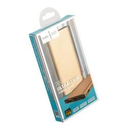 Аккумулятор внешний универсальный Hoco J17-7000 mAh Clear Power Bank (USB: 5V-2.1A) Золотой