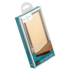 Аккумулятор внешний универсальный Hoco J17A-10000 mAh Clear Power Bank (2USB: 5V-2.1A) Золотой